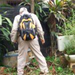 Informe epidemiológico reporta casos de Dengue y Zika, más no Chikungunya